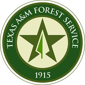 <p>    San Jacinto County Completes Community