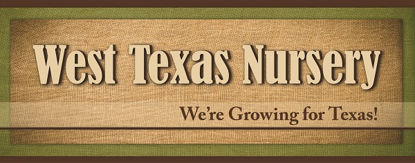 T3 - West Texas Nursery Banner